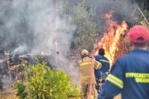 Πυρκαγιά ξέσπασε στο χωριό Μαγούλα Δ. Σπάρτης