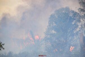 Ενημέρωση για τις δασικές πυρκαγιές που εκδηλώθηκαν σε όλη την Ελλάδα
