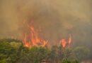 Έκτακτη προειδοποίηση  πολύ υψηλού κινδύνου πυρκαγιάς στην Λακωνία