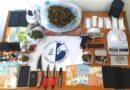 Μεσσηνία : Εξαρθρώθηκε εγκληματικό δίκτυο