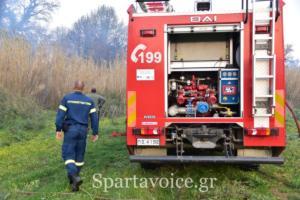 Ριζά Σπάρτης Πυρκαγιά (14)