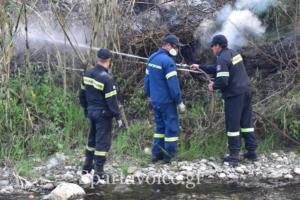 Ριζά Σπάρτης Πυρκαγιά (8)