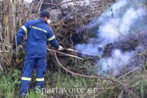 Ριζά Σπάρτης Πυρκαγιά (7)