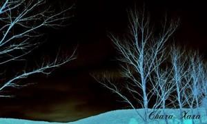 Η μαγεία της νύχτας...